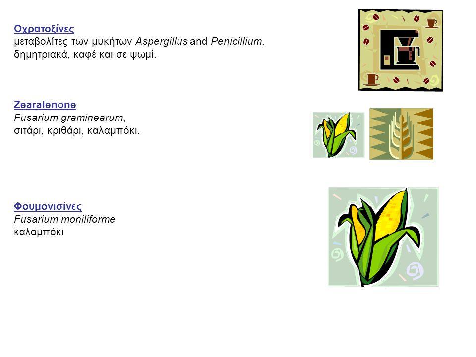 Οχρατοξίνες μεταβολίτες των μυκήτων Aspergillus and Penicillium. δημητριακά, καφέ και σε ψωμί. Zearalenone.