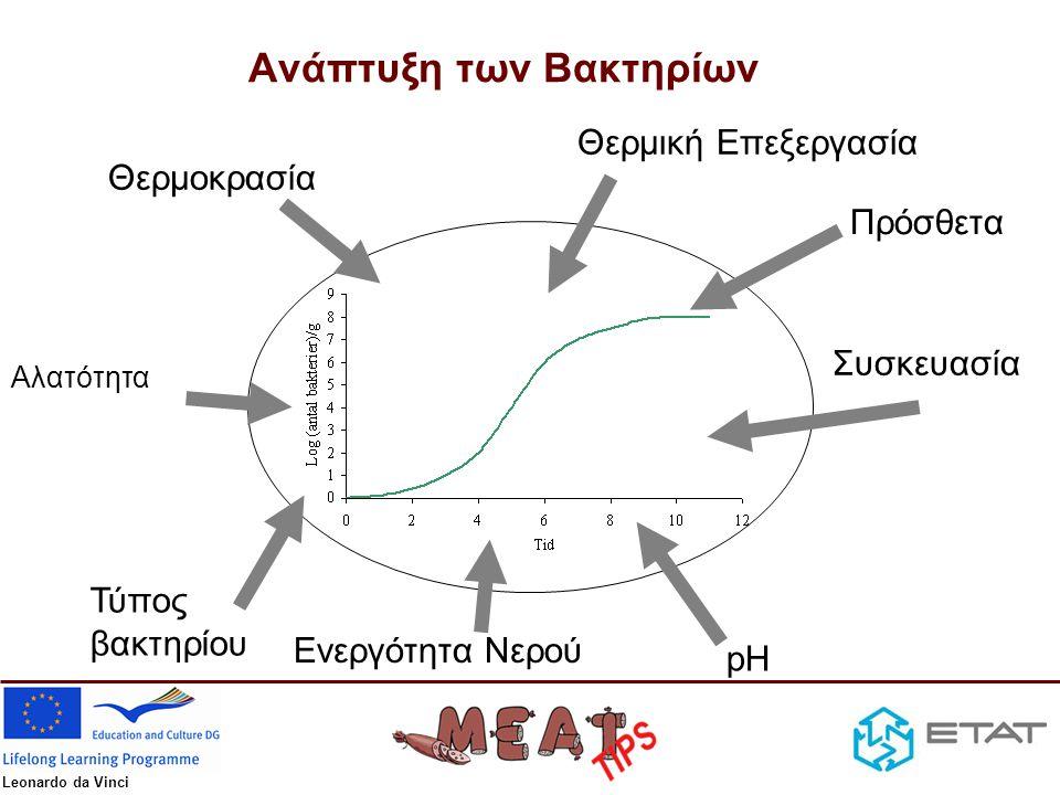 Ανάπτυξη των Βακτηρίων