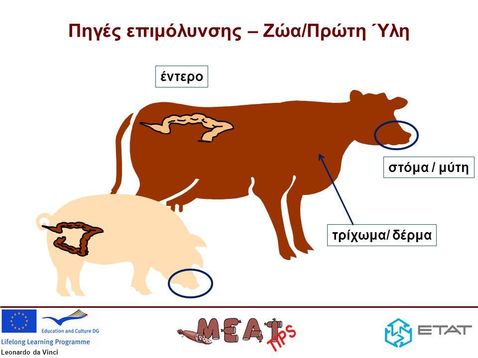 Πηγές επιμόλυνσης – Ζώα/Πρώτη Ύλη