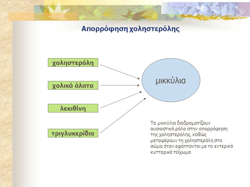 Απορρόφηση χοληστερόλης