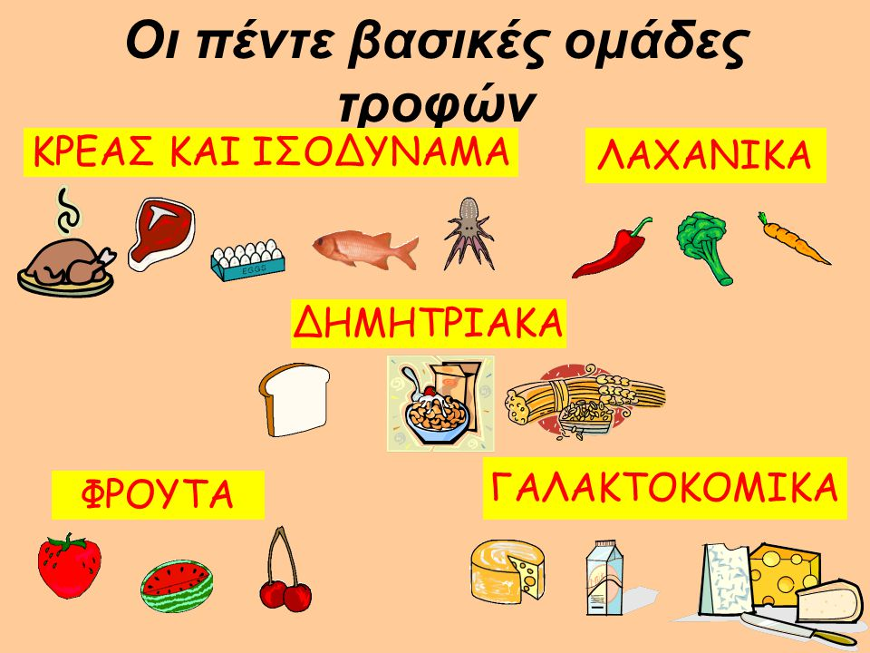 Οι πέντε βασικές ομάδες τροφών