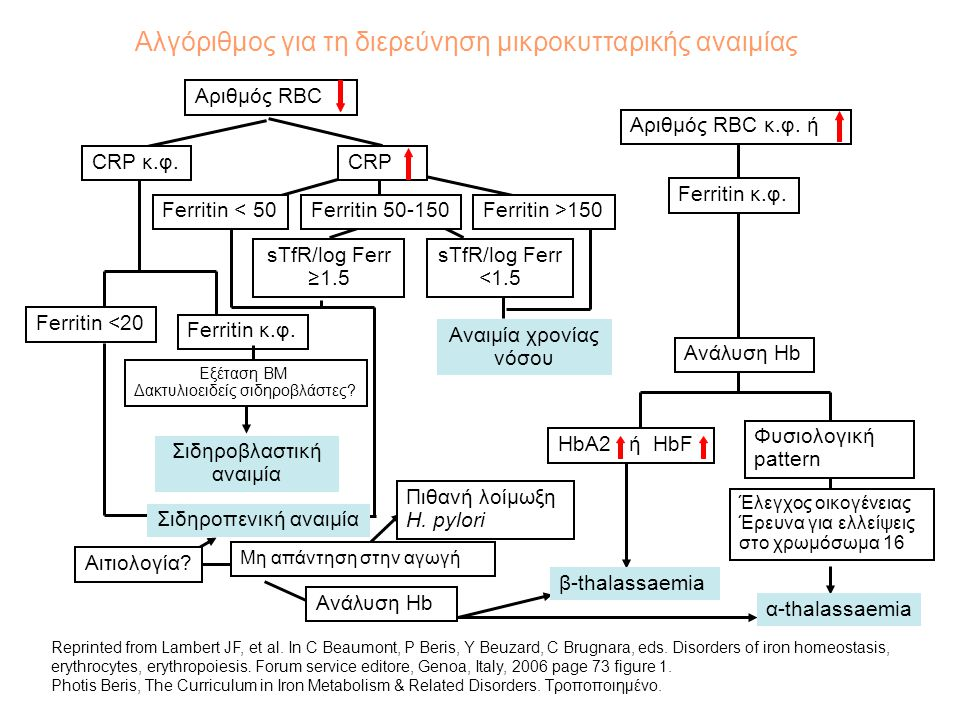 Αλγόριθμος για τη διερεύνηση μικροκυτταρικής αναιμίας