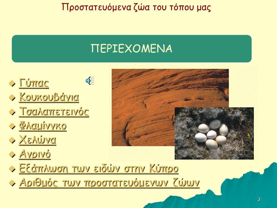 ΠΕΡΙΕΧΟΜΕΝΑ Γύπας. Κουκουβάγια. Τσαλαπετεινός. Φλαμίνγκο. Χελώνα. Αγρινό. Εξάπλωση των ειδών στην Κύπρο.