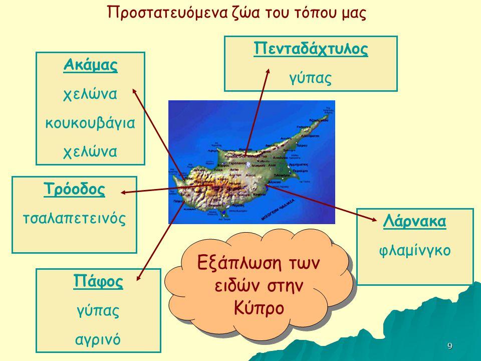 Εξάπλωση των ειδών στην Κύπρο