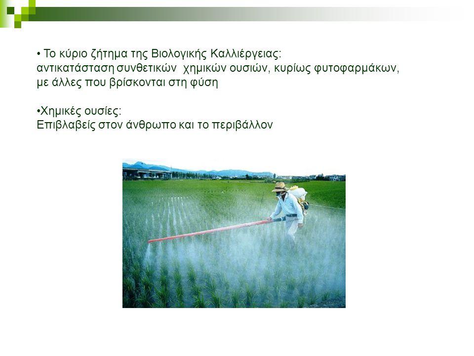 Το κύριο ζήτημα της Βιολογικής Καλλιέργειας:
