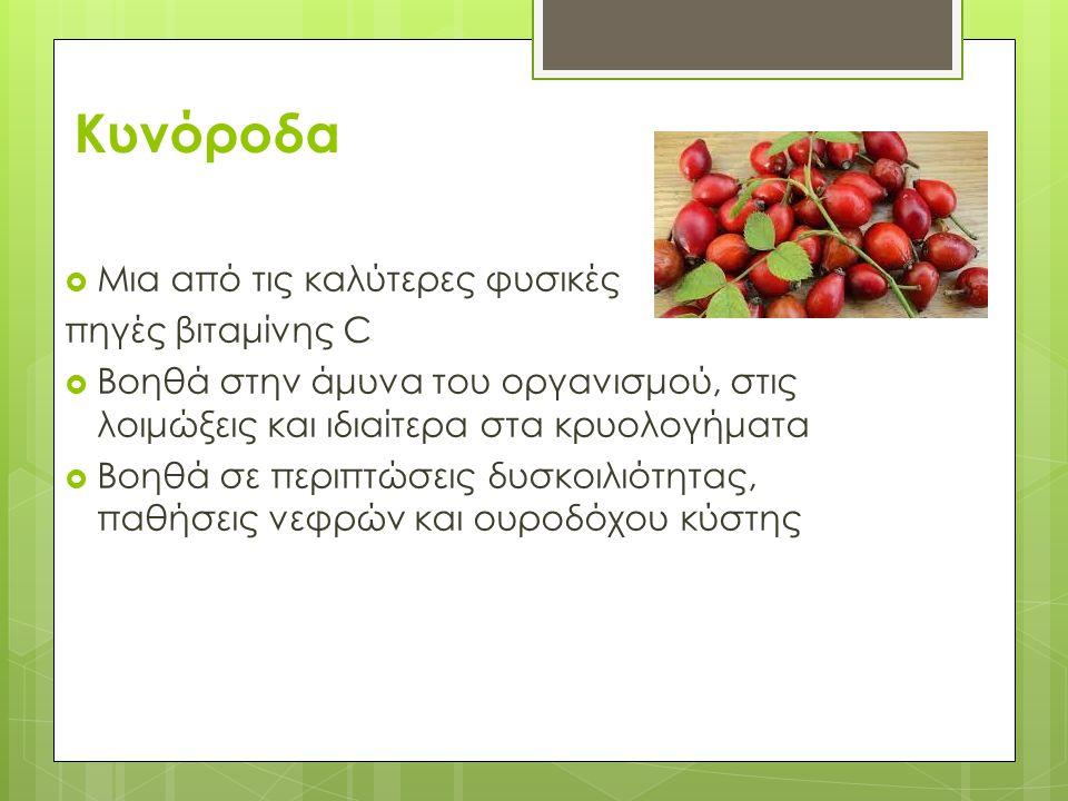 Κυνόροδα Μια από τις καλύτερες φυσικές πηγές βιταμίνης C