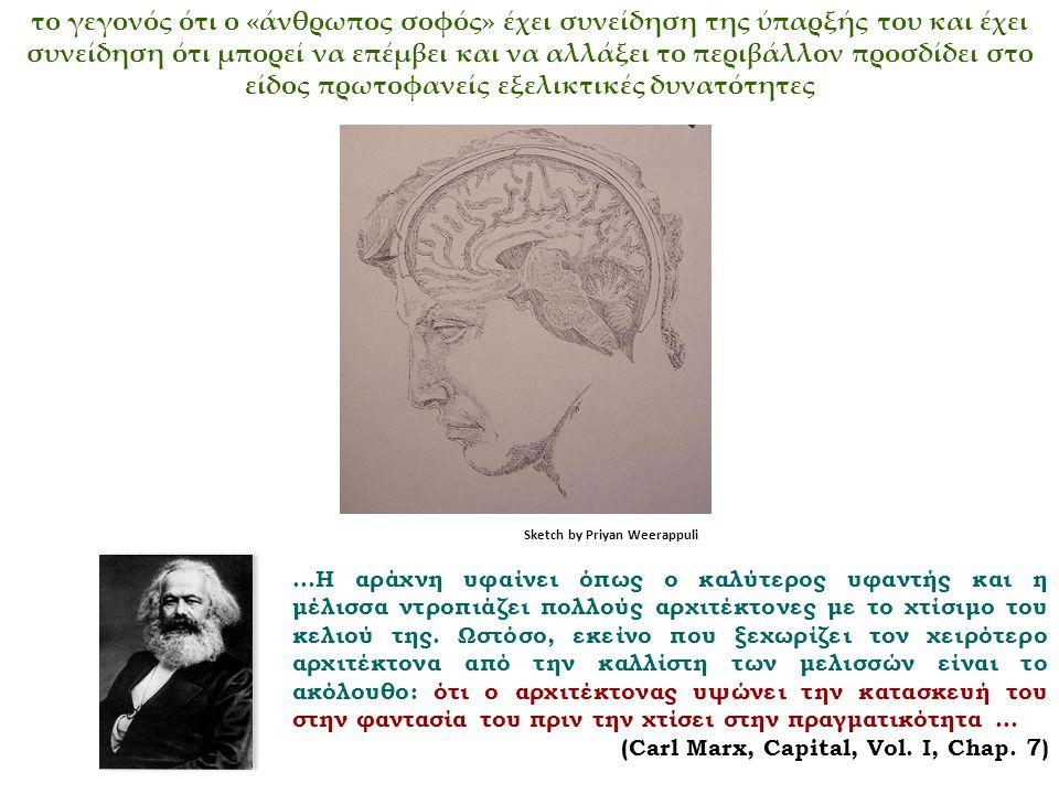 το γεγονός ότι ο «άνθρωπος σοφός» έχει συνείδηση της ύπαρξής του και έχει συνείδηση ότι μπορεί να επέμβει και να αλλάξει το περιβάλλον προσδίδει στο είδος πρωτοφανείς εξελικτικές δυνατότητες