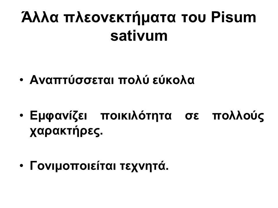 Άλλα πλεονεκτήματα του Pisum sativum