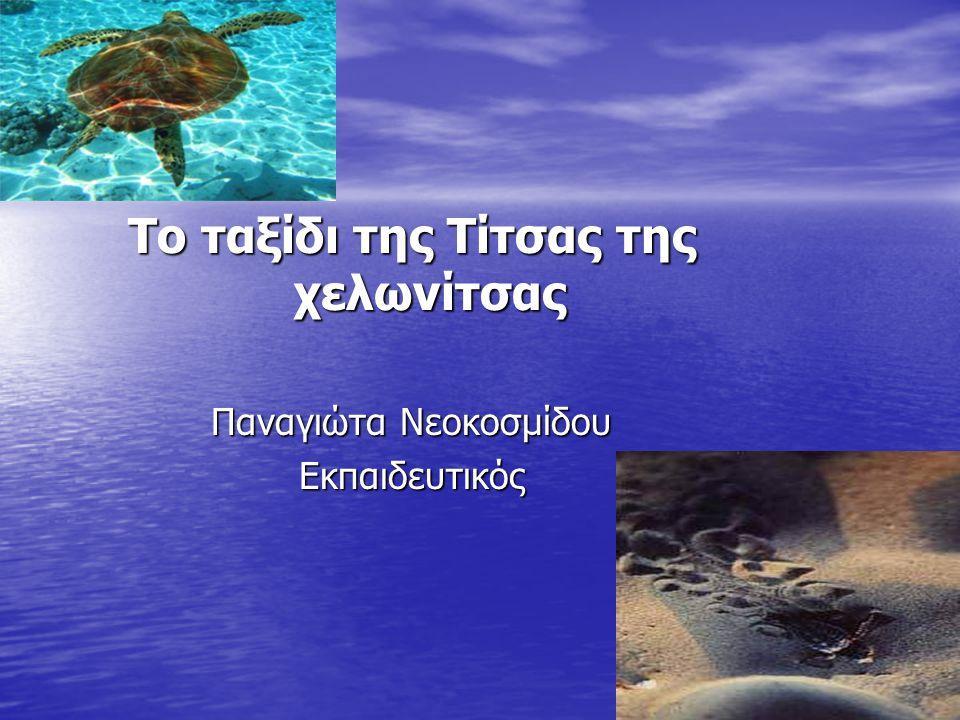 Το ταξίδι της Τίτσας της χελωνίτσας