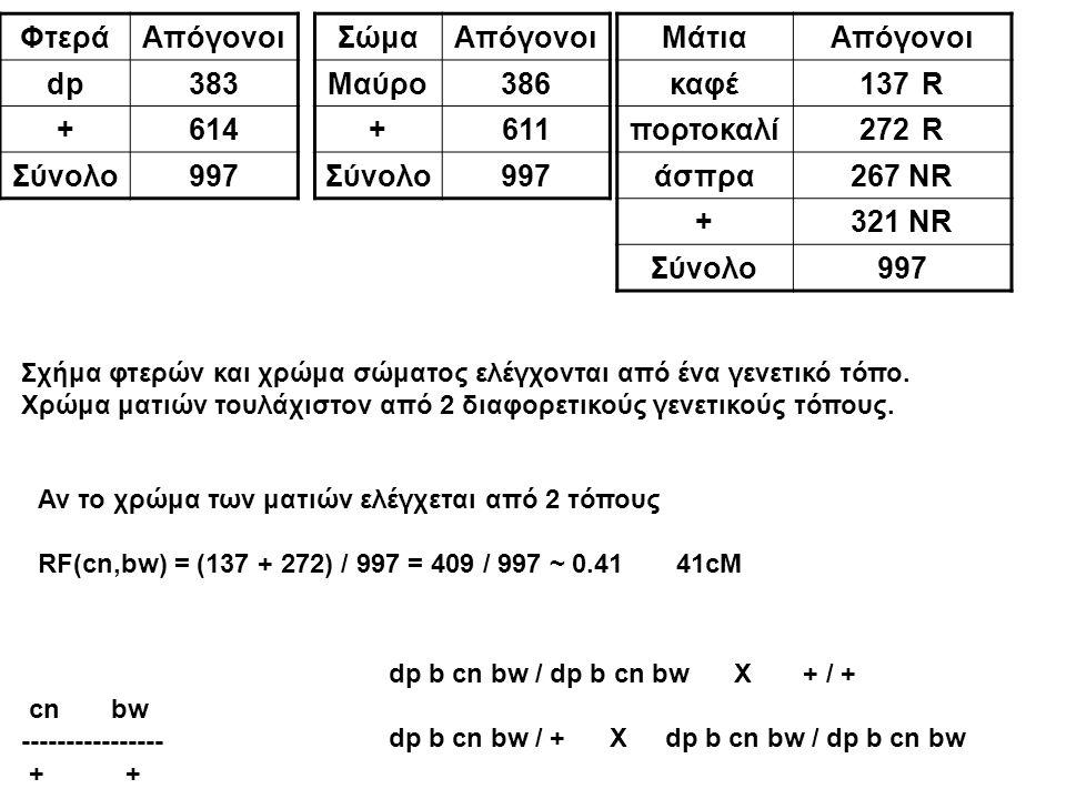 Φτερά Απόγονοι dp 383 + 614 Σύνολο 997 Σώμα Απόγονοι Μαύρο 386 + 611