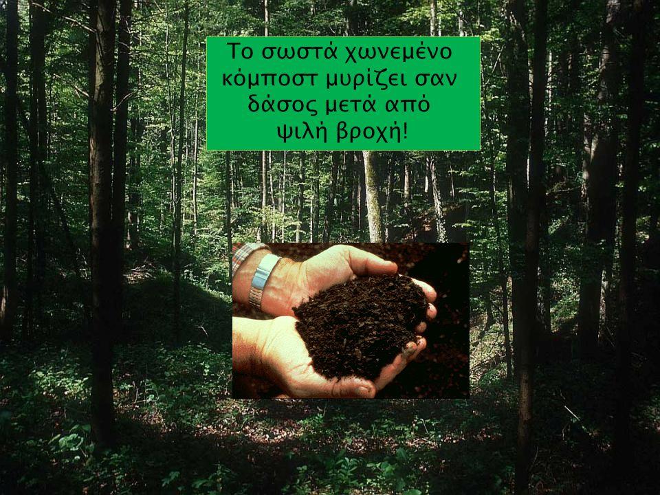 Το σωστά χωνεμένο κόμποστ μυρίζει σαν δάσος μετά από ψιλή βροχή!