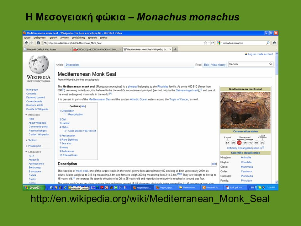 H Μεσογειακή φώκια – Monachus monachus
