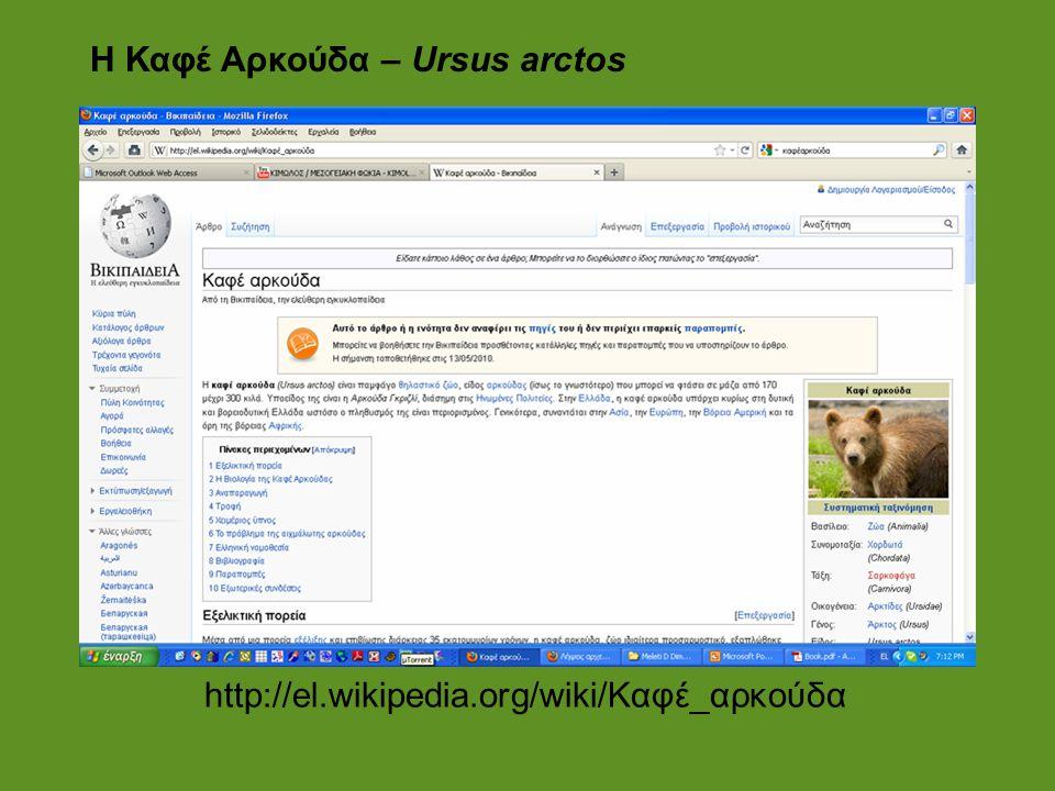 Η Καφέ Αρκούδα – Ursus arctos