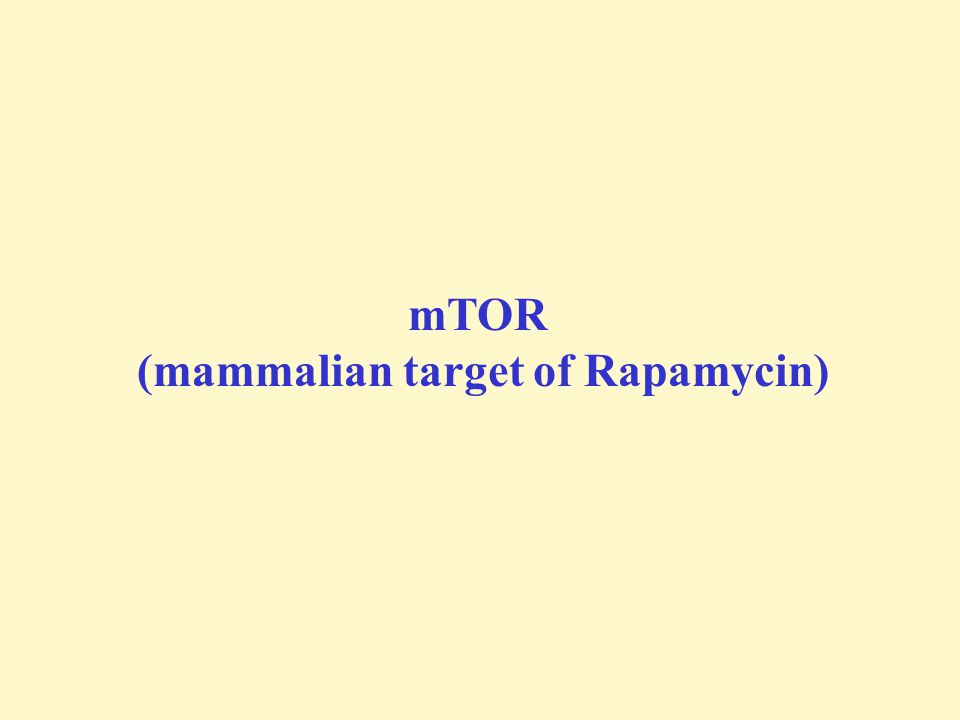 (mammalian target of Rapamycin)