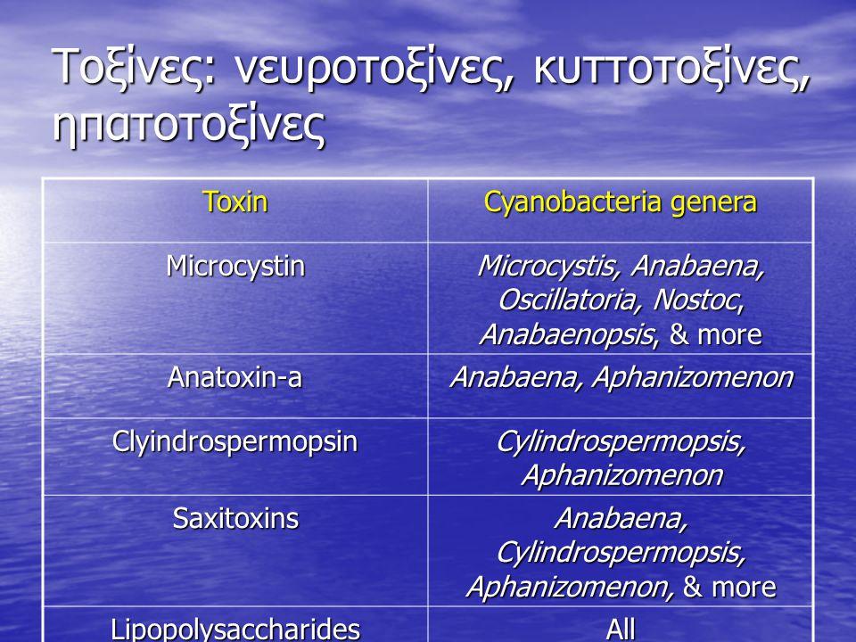 Τοξίνες: νευροτοξίνες, κυττοτοξίνες, ηπατοτοξίνες