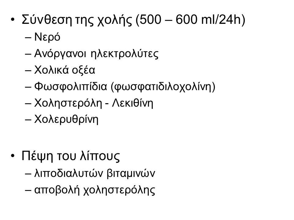 Σύνθεση της χολής (500 – 600 ml/24h)