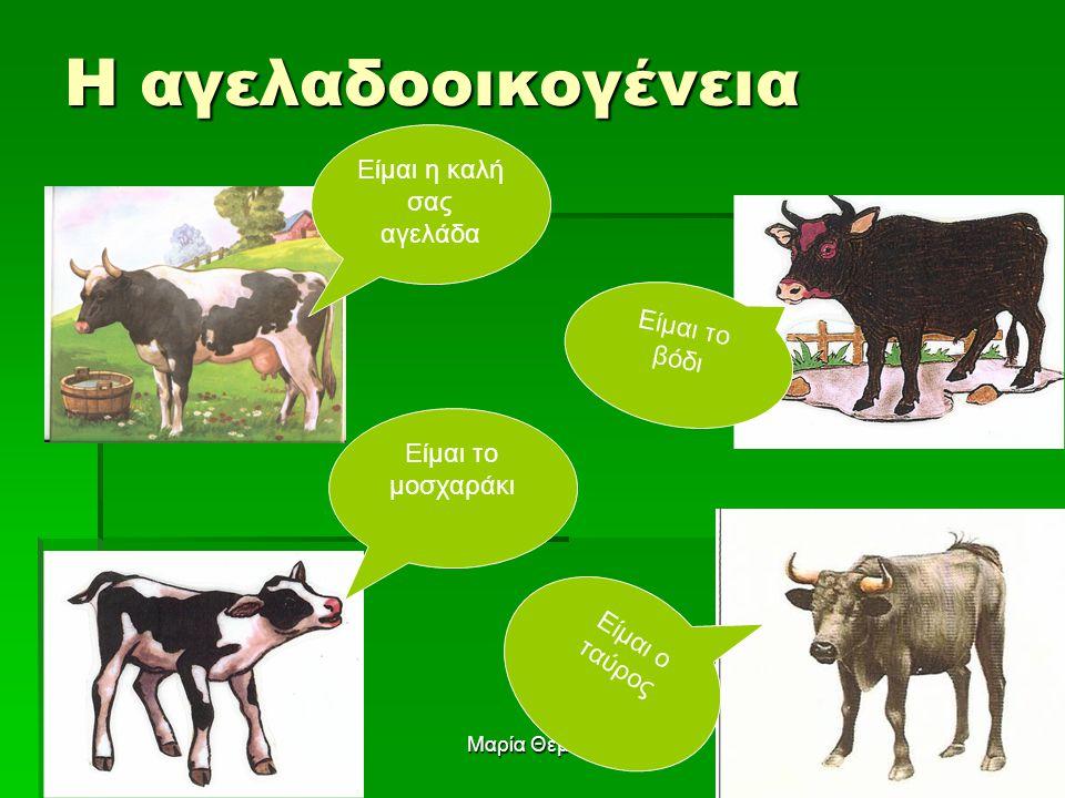 Είμαι η καλή σας αγελάδα