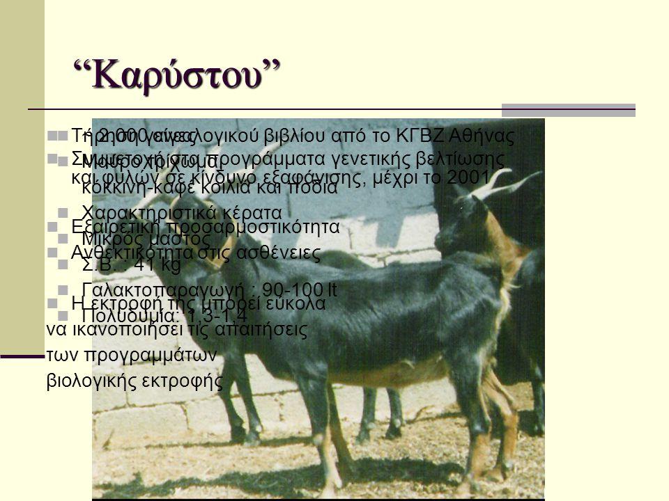 Καρύστου Τήρηση γενεαλογικού βιβλίου από το ΚΓΒΖ Αθήνας