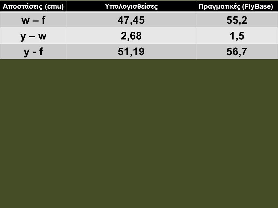 w – f 47,45 55,2 y – w 2,68 1,5 y - f 51,19 56,7 Αποστάσεις (cmu)