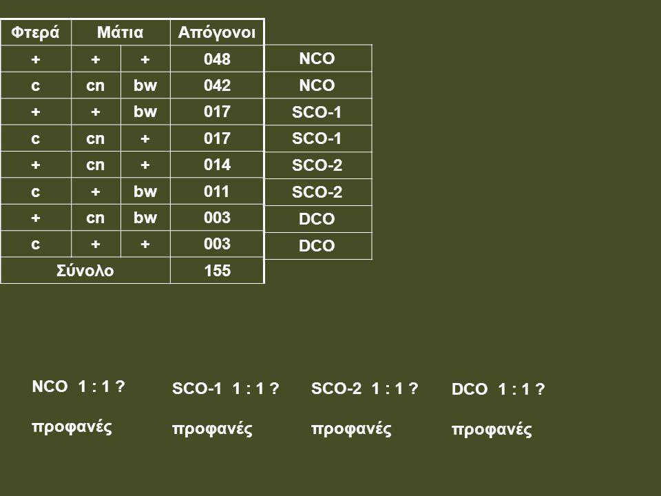 Φτερά Μάτια. Απόγονοι. + 048. c. cn. bw. 042. 017. 014. 011. 003. Σύνολο. 155. NCO. SCO-1.