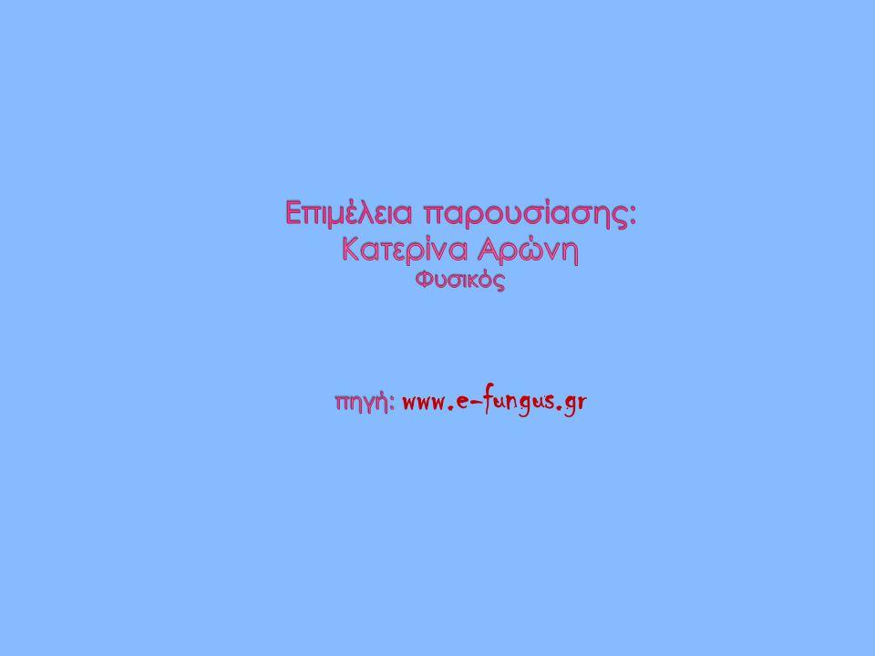 Επιμέλεια παρουσίασης: Κατερίνα Αρώνη Φυσικός πηγή: www.e-fungus.gr