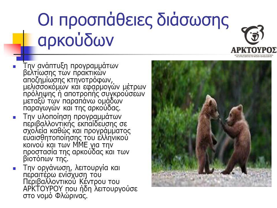 Οι προσπάθειες διάσωσης αρκούδων