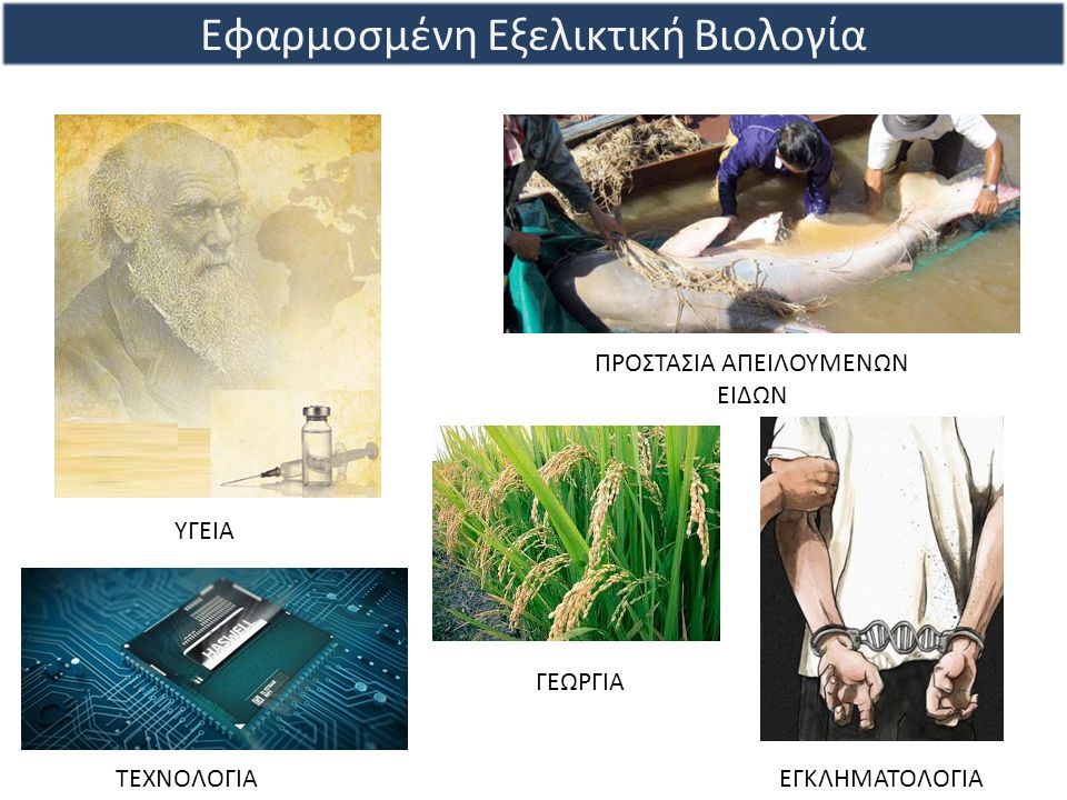 Εφαρμοσμένη Εξελικτική Βιολογία