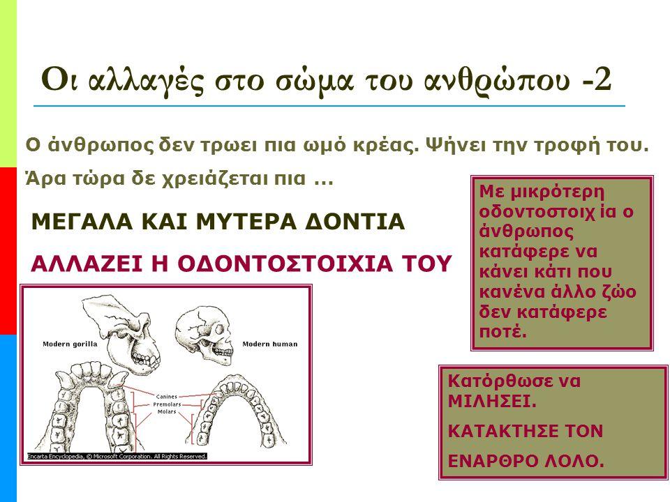 Οι αλλαγές στο σώμα του ανθρώπου -2