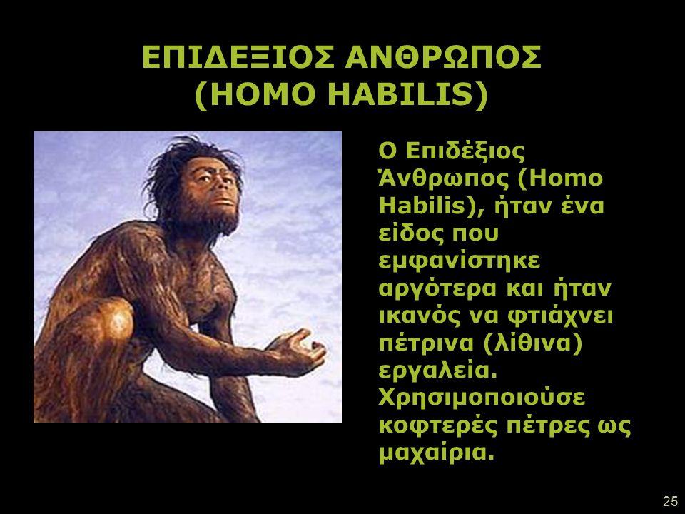 ΕΠΙΔΕΞΙΟΣ ΑΝΘΡΩΠΟΣ (HOMO HABILIS)