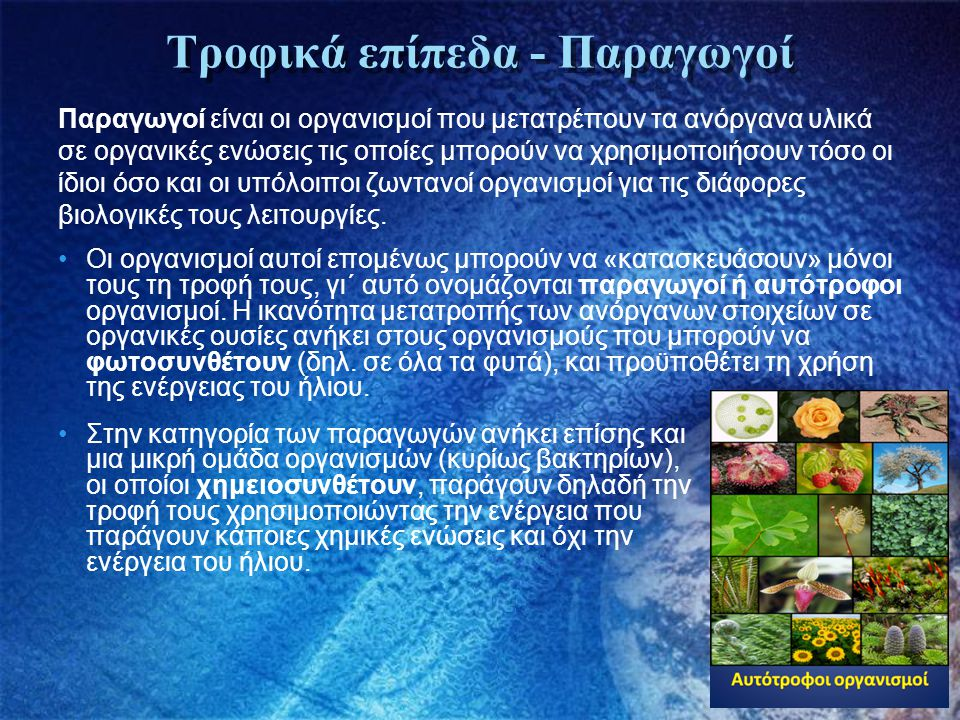Τροφικά επίπεδα - Παραγωγοί