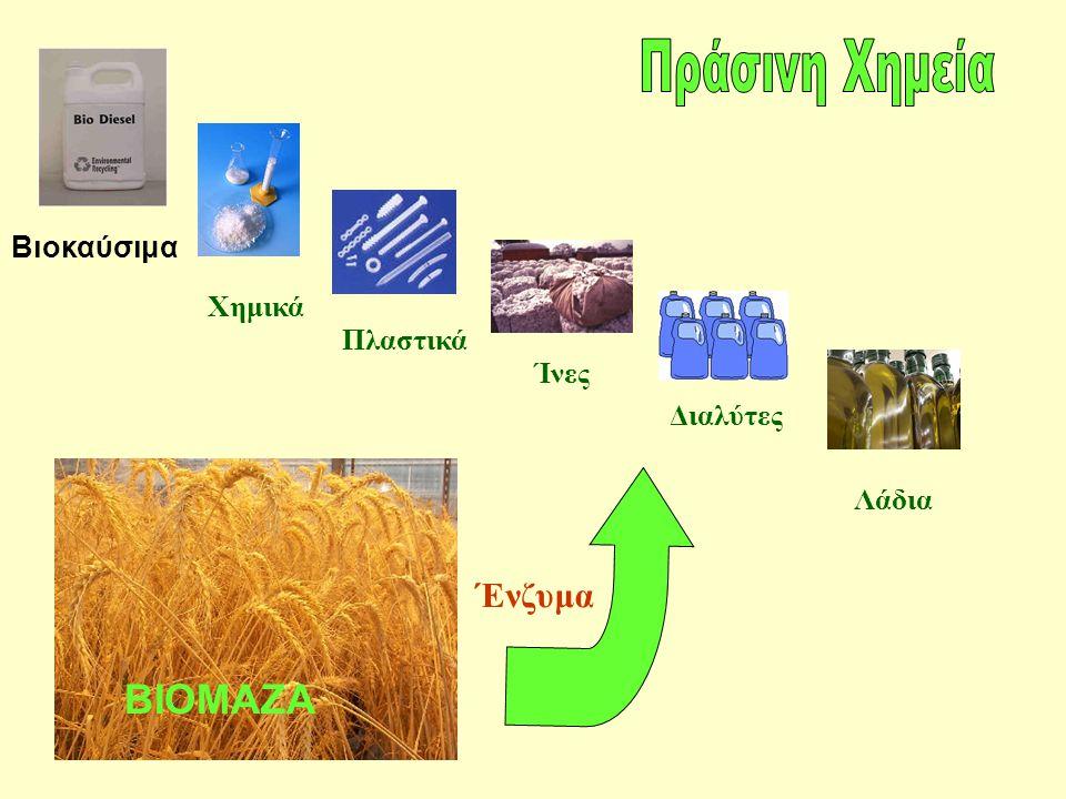 Πράσινη Χημεία ΒΙΟΜΑΖΑ Ένζυμα Βιοκαύσιμα Χημικά Πλαστικά Ίνες Διαλύτες