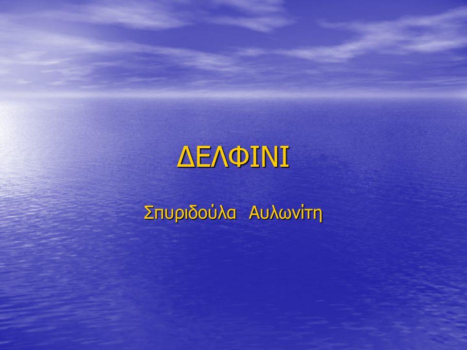 ΔΕΛΦΙΝΙ Σπυριδούλα Αυλωνίτη