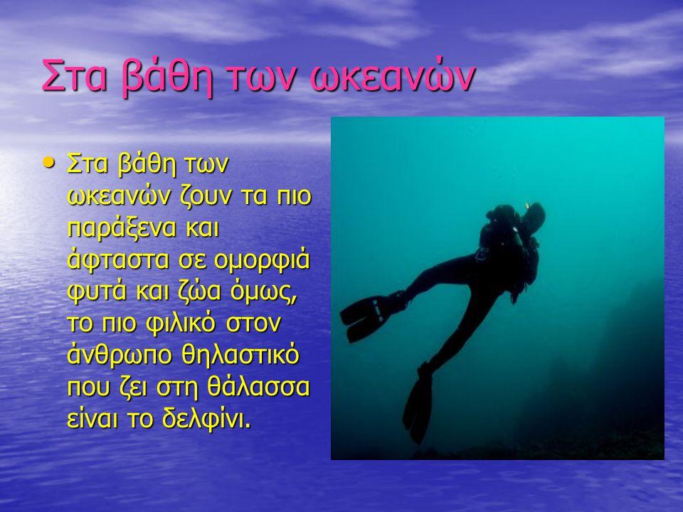 Στα βάθη των ωκεανών