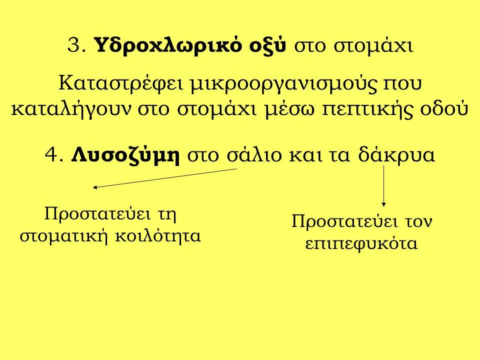 3. Υδροχλωρικό οξύ στο στομάχι