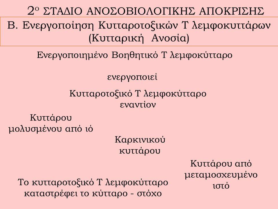 2ο ΣΤΑΔΙΟ ΑΝΟΣΟΒΙΟΛΟΓΙΚΗΣ ΑΠΟΚΡΙΣΗΣ
