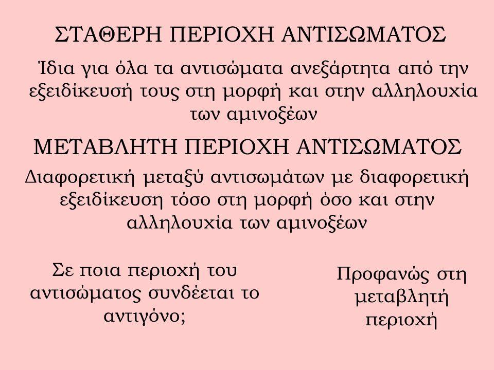 ΣΤΑΘΕΡΗ ΠΕΡΙΟΧΗ ΑΝΤΙΣΩΜΑΤΟΣ
