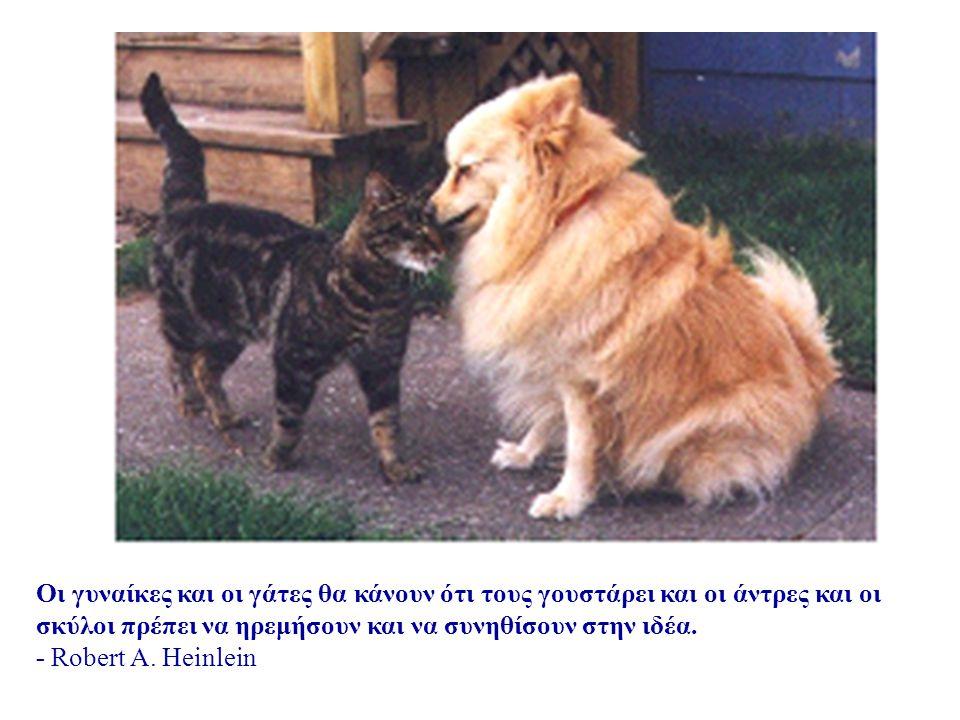 Οι γυναίκες και οι γάτες θα κάνουν ότι τους γουστάρει και οι άντρες και οι σκύλοι πρέπει να ηρεμήσουν και να συνηθίσουν στην ιδέα.