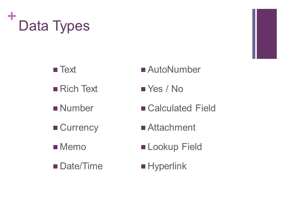 Data Types Text Rich Text Number Currency Memo Date/Time AutoNumber