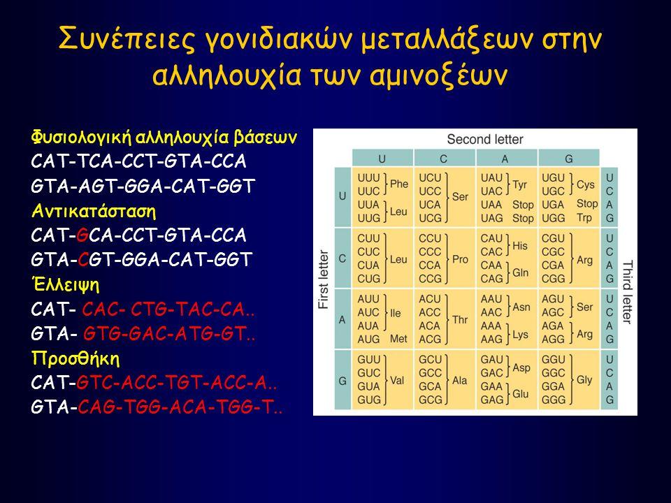 Συνέπειες γονιδιακών μεταλλάξεων στην αλληλουχία των αμινοξέων