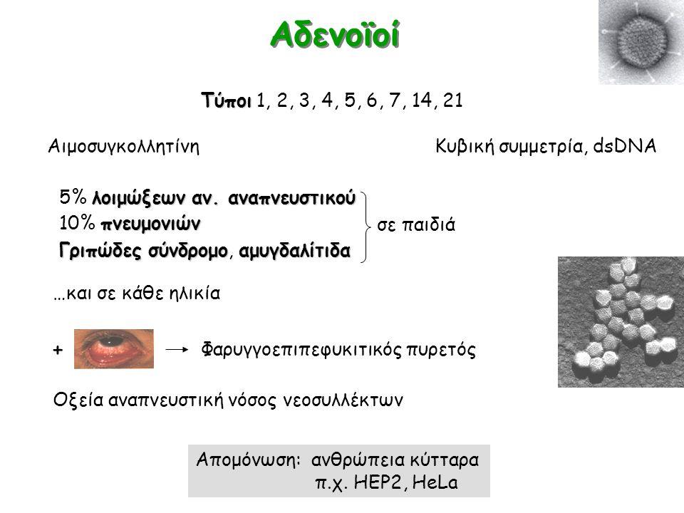 Αδενοϊοί + Τύποι 1, 2, 3, 4, 5, 6, 7, 14, 21 Αιμοσυγκολλητίνη