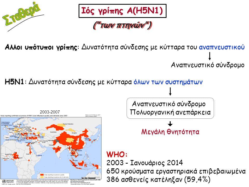 Σταθερά Ιός γρίπης A(H5N1) ( των πτηνών )