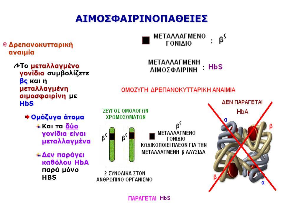 ΑΙΜΟΣΦΑΙΡΙΝΟΠΑΘΕΙΕΣ Δρεπανοκυτταρική αναιμία