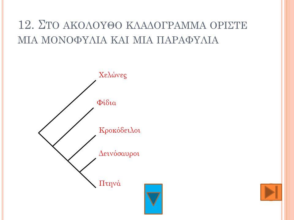 12. Στο ακολουθο κλαδογραμμα οριςτε μια μονοφυλια και μια παραφυλια