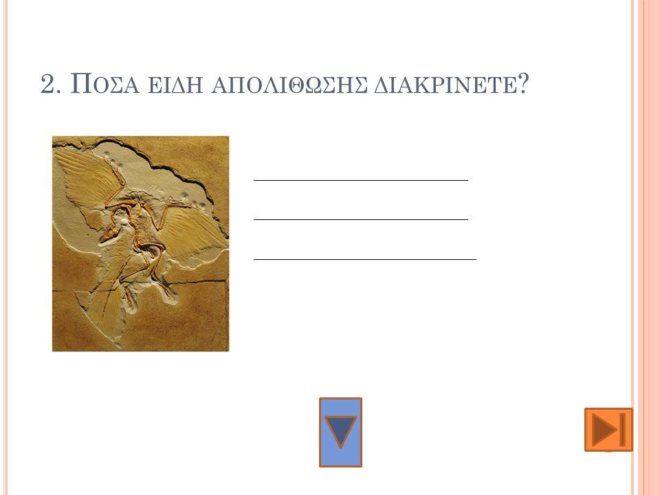2. Ποςα ειδη απολιθωςης διακρινετε