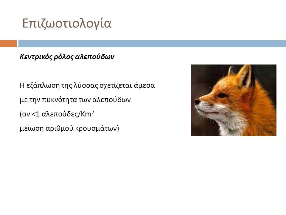 Επιζωοτιολογία Κεντρικός ρόλος αλεπούδων