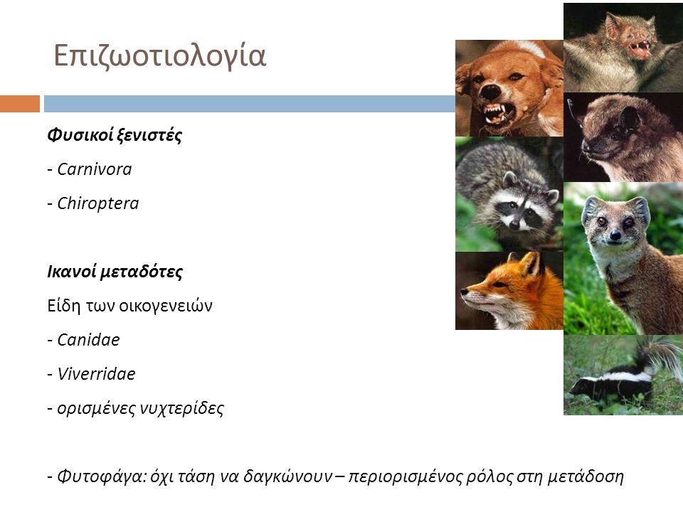 Επιζωοτιολογία Φυσικοί ξενιστές Carnivora Chiroptera Ικανοί μεταδότες
