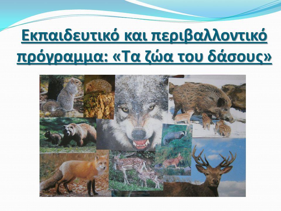 Εκπαιδευτικό και περιβαλλοντικό πρόγραμμα: «Τα ζώα του δάσους»