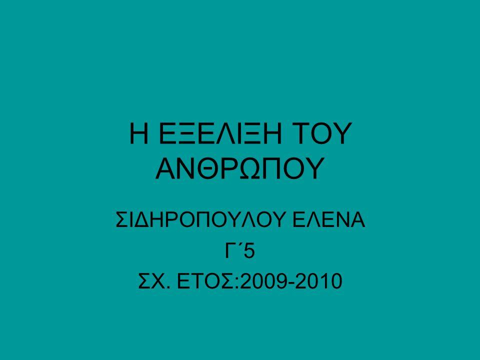 ΣΙΔΗΡΟΠΟΥΛΟΥ ΕΛΕΝΑ Γ΄5 ΣΧ. ΕΤΟΣ:2009-2010