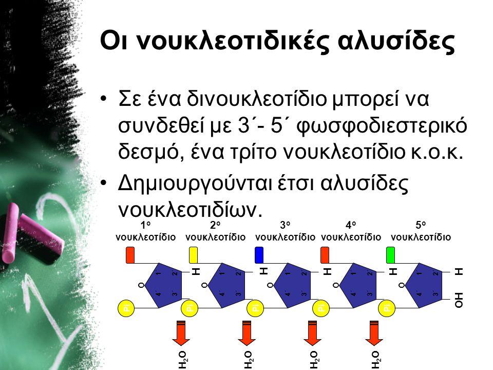 Οι νουκλεοτιδικές αλυσίδες