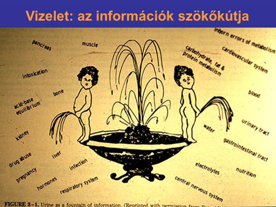 Vizelet: az információk szökőkútja